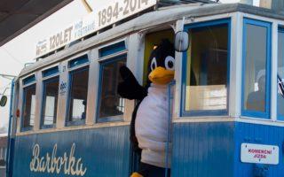Tučňák Rudolf se veze Barborkou na Vánoční kluziště!!!