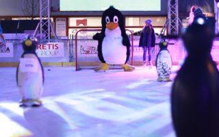 Tučňák Rudolf má na Vánočním kluzišti!!! i malé kamarády, které si můžete půjčovat.